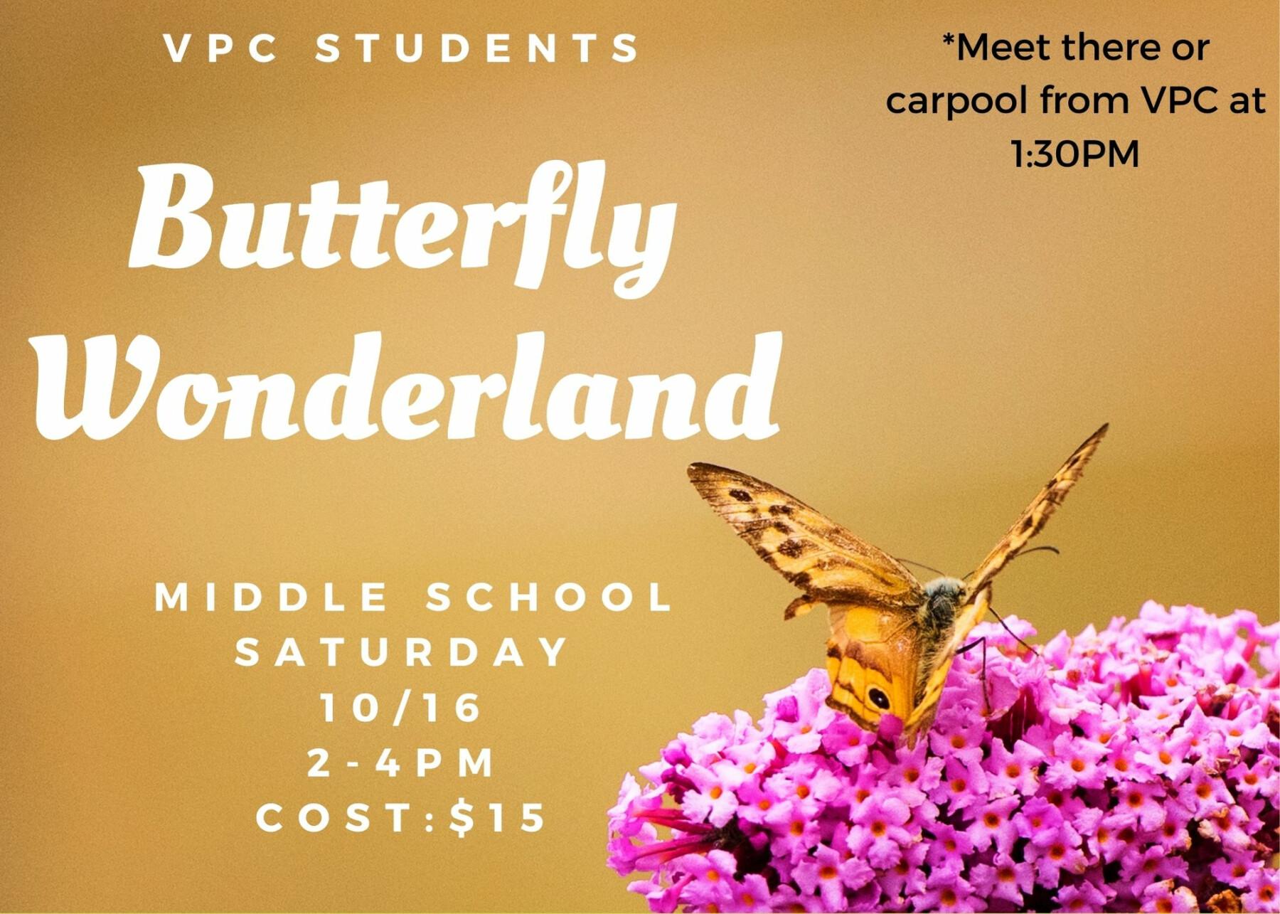 VPC Middle School: Butterfly Wonderland